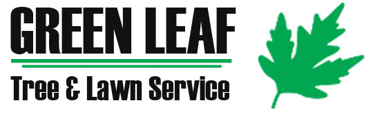 Green Leaf Tree Services Inc.