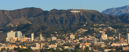 Hollywood Tree Services
